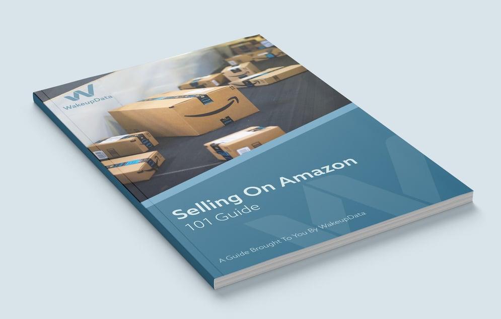 Amazon-101---ebook-preview